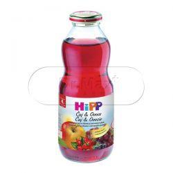 Hipp Čaj & ovoce šípkový čaj se šťávou 500 ml