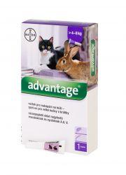 Advantage Roztok pro nakapání na kůži spot-on pro velké kočky a králíky 80 mg 1x0,8 ml