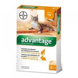 Advantage pro malé kočky a králíky 40 mg spot-on 4x0,4 ml