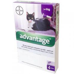 Advantage spot-on pro velké kočky a králíky 80 mg roztok pro nakapání na kůži 4 pipety