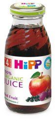 Hipp ŠŤÁVA z červených plodů 200 ml