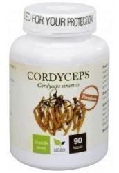 Cordyceps PREMIUM 90 kapslí