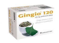 Gingio 120 mg 30 tablet