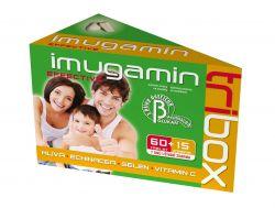 Imugamin Effective 60+15 tablet